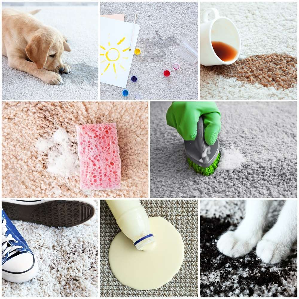 Different types of dirt on carpet. Cleaning concept