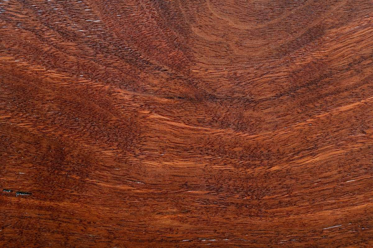 timber flooring melbourne blackbutt (3)